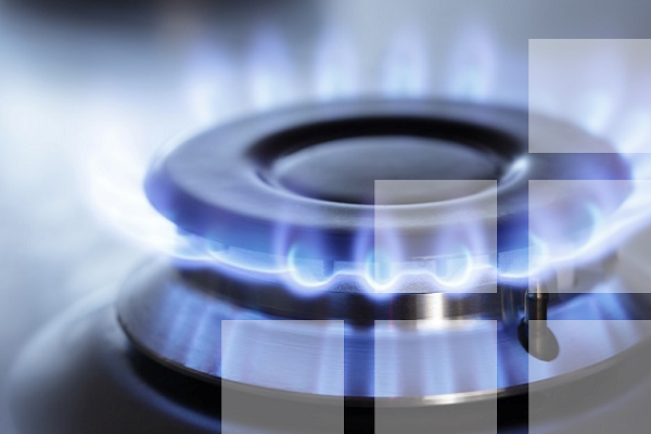 Taking the reform of gas distribution to the point